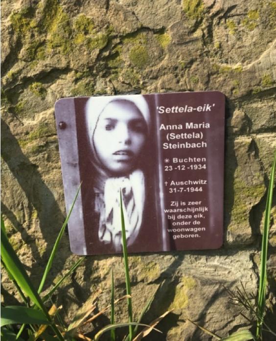 Settela-eik Born gedenkbord
